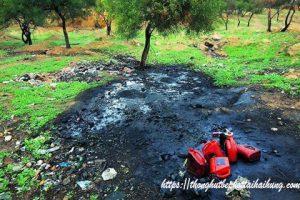 Thực trạng – nguyên nhân – hậu quả – cách khắc phục ô nhiễm môi trường đất